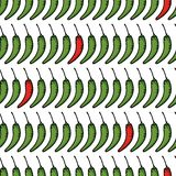 Vector seamless pattern of sketch pepper chili. Royalty Free Stock Photography