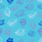 Vector seamless pattern sketch of seashells ion blue background. Hand-drawn sea animals. Royalty Free Stock Photo