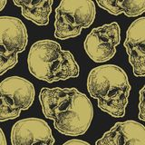 Vector seamless pattern. With skulls and bones on dark background royalty free illustration