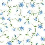 Seamless floral pattern with bluebell flowers. Vector illustration. Stock Photography