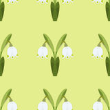 Vector seamless pattern with snowdrop, spring flower. Green background for your design, greeting cards Stock Photography