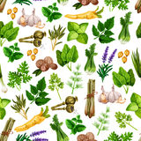 Vector seamless pattern of spice herb seasonings Stock Photos