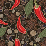Vector seamless pattern with spice Stock Photos