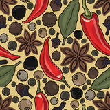 Vector seamless pattern with spice Stock Images