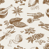 Vector seamless pattern with spices. Repeating Stock Image
