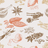Vector seamless pattern with spices. Repeating Royalty Free Stock Image