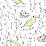 Vector seamless pattern. Spring gentle brunch with bud, feather, Stock Images