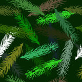 Vector seamless pattern of spruce branches. Royalty Free Stock Image
