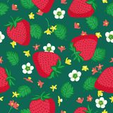 Vector seamless pattern with strawberries. Graphic stylized drawing. Stock Photos