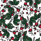 Vector seamless pattern with strawberries Royalty Free Stock Image