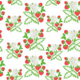 vector seamless pattern with strawberry Stock Image
