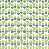 Vector seamless pattern with succulent plants and cactuses in po Royalty Free Stock Images
