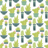 Vector seamless pattern with succulent plants and cactuses in po Stock Photo