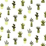 Vector seamless pattern with succulents and houseplants in vase Royalty Free Stock Photography