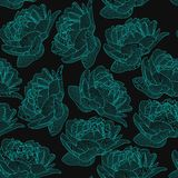 Vector seamless pattern,texture with hand drawn flowers,pions on the dark colored background. Elegant,romantic,trendy print. stock illustration