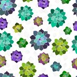 Vector seamless pattern, texture, paper, print with succulents and leaves on the white background. Trendy elements. stock illustration