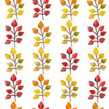 Vector seamless pattern,texture,print with fall leaves on the transparent background. Autumn colors. royalty free illustration