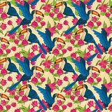 Vector seamless pattern with toucan birds Stock Images