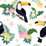 Vector seamless pattern with toucan birds on tropical branches with leaves and flowers Royalty Free Stock Image