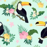 Vector seamless pattern with toucan birds on tropical branches with leaves and flowers Stock Images