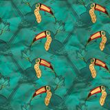 Vector seamless pattern with toucan Royalty Free Stock Image