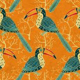Vector seamless pattern with toucan Stock Photo
