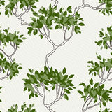 Vector seamless pattern of tree branches with Stock Image