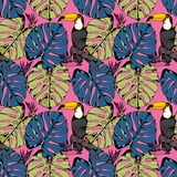 Vector seamless pattern with tropical branches, leaves and birds. Hand drawing Stock Photography