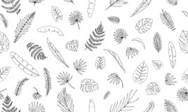 Vector seamless pattern of tropical plant leaves royalty free illustration