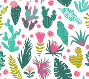 Vector seamless pattern of tropical plants, cacti, succulents, flowers. Stock Photos