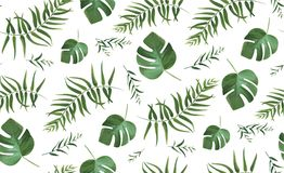 Vector seamless pattern with tropical watercolor style forest pa. Lm tree fronds, greenery exotic herbs monstera green leaves. Beautiful trendy elegant spring Royalty Free Stock Photos