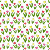 Vector seamless pattern with tulips. Royalty Free Stock Images