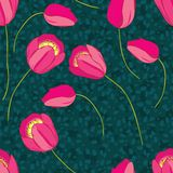 Vector seamless pattern with tulips Royalty Free Stock Image