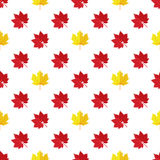 Vector seamless pattern with various colorful autumn leaves on a white background. Seamless pattern with various colorful autumn leaves on a white background Stock Illustration