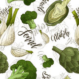 Vector seamless pattern with vegetables. Fennel and artichoke and broccoli background. Hand drawn elements.  Royalty Free Stock Photo