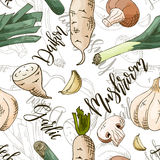 Vector seamless pattern with vegetables. Mushroom and daikon and garlic background. Hand drawn elements.  Stock Photography