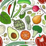 Vector seamless pattern of vegetables in a realistic sketch style. Healthy food, natural product, vegetable farm, vegan food, spor stock illustration