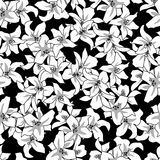 Floral  seamless black-white   pattern   Royalty Free Stock Image