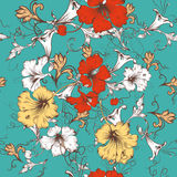 Vector seamless pattern for wallpaper design with flowers. Classic vector pattern with hibiscus flowers and ornament in vintage style Royalty Free Stock Photo