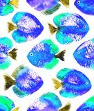 Vector seamless pattern with watercolor discus fish Royalty Free Stock Photos