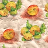Vector seamless pattern with watercolor fruits on  Royalty Free Stock Photo