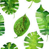 Vector seamless pattern with watercolor green leaves Stock Images
