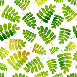 Vector seamless pattern with watercolor leaves. Good for childre Royalty Free Stock Images