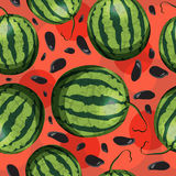 Vector seamless pattern with watermelon Stock Photography