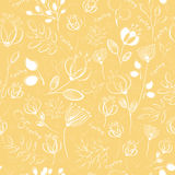 Vector seamless pattern. White flowers royalty free stock photos