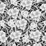 black-white floral   texture Royalty Free Stock Images