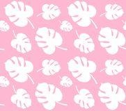 Vector seamless pattern of white monstera palm leaves isolated on pink background vector illustration