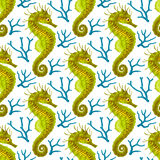 Vector Seamless Pattern whith Seahorse and Coral Royalty Free Stock Photography