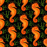 Vector Seamless Pattern whith Seahorse and Coral Stock Photos