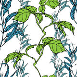 Vector Seamless Pattern With Eucaliptus And Hedera Leaves